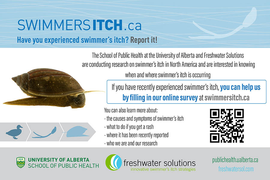 Swimmer's Itch - Report It!